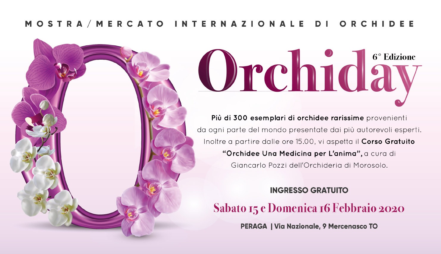Orchiday: per un weeknd tra più di 300 esemplari di orchidee!